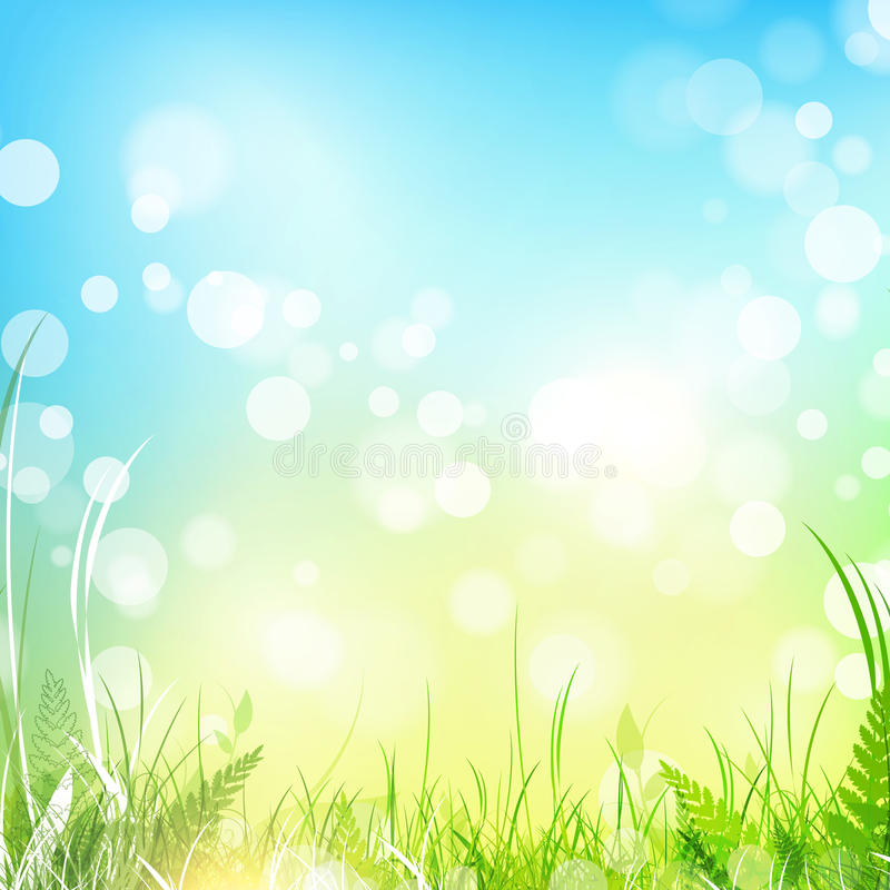 Spring meadow with blue sky vector illustration