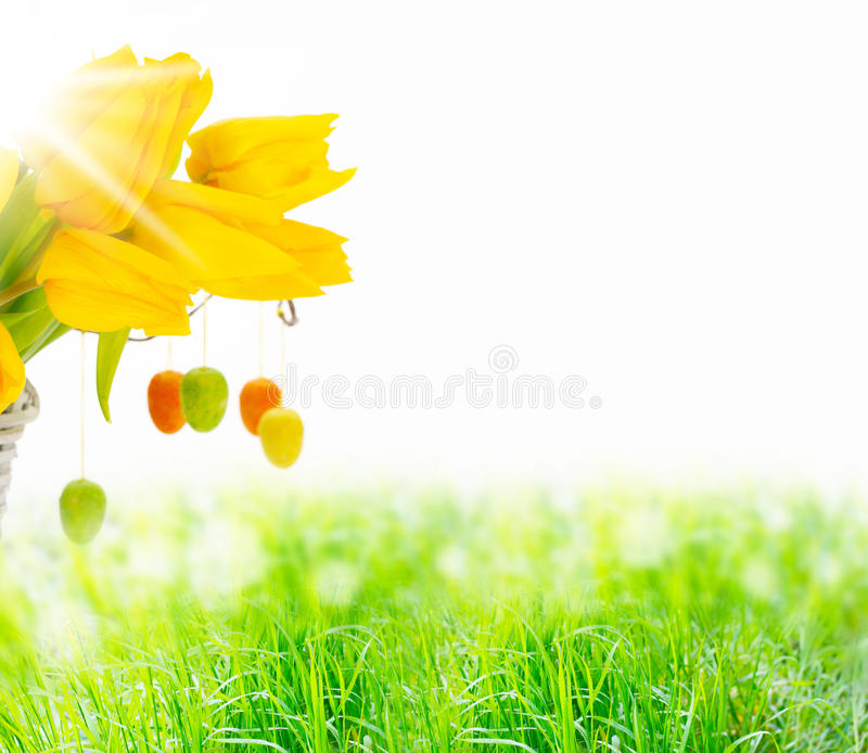 Spring meadow, easter stock photography