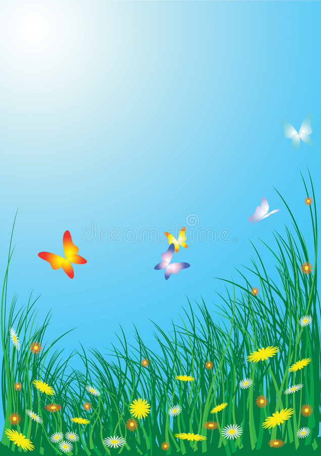 Spring meadow with flowers royalty free stock photography