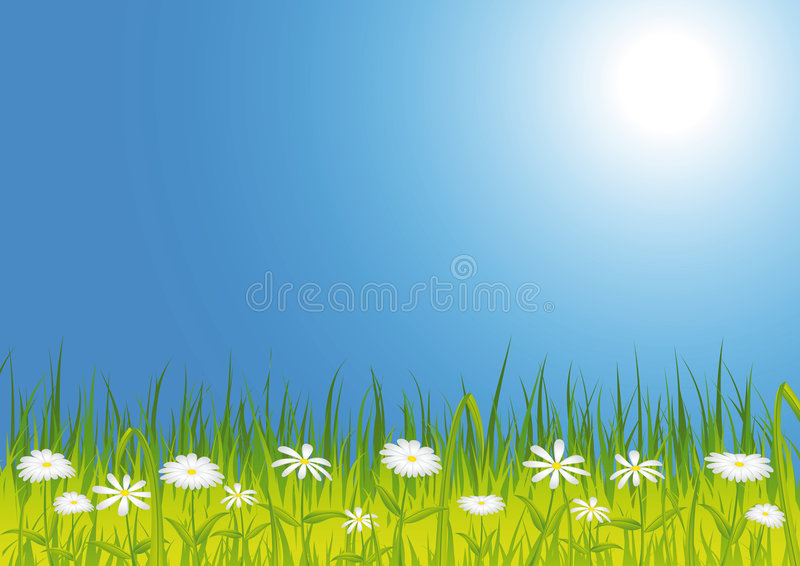 Download Spring Meadow With Flowers Royalty Free Stock Photo - Image: 7930825