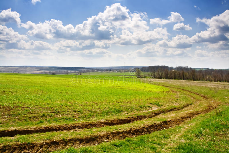 Spring On Meadow Landscape Stock Photos