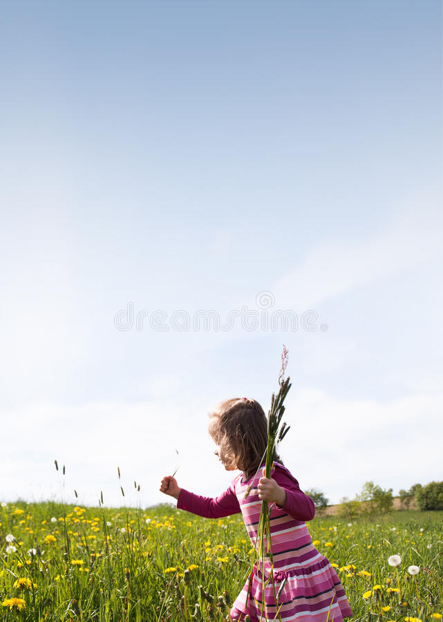 Spring Meadow #34 stock photo