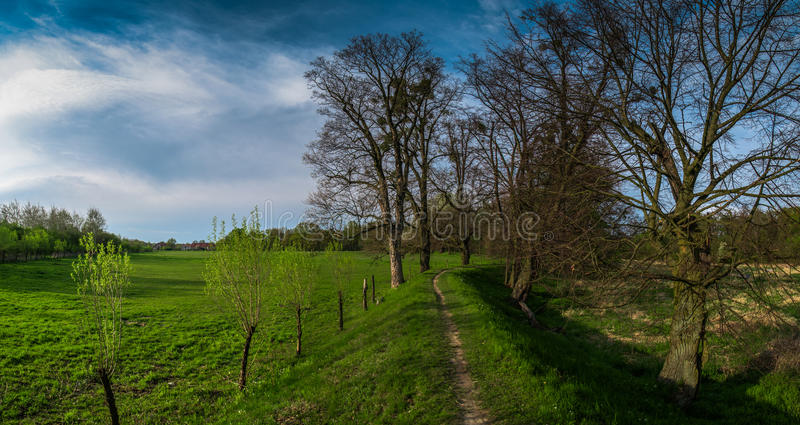 Spring Meadow Panorama, Poland stock photo