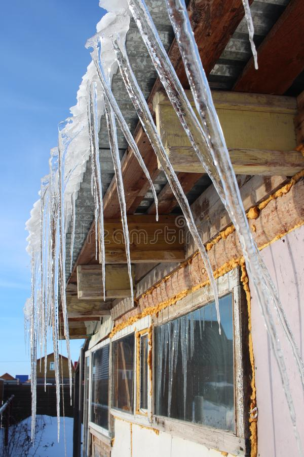 Spring melting icicles hang from the roof  the house in March stock photography