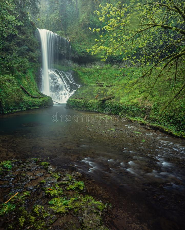 Spring. Middle North Falls, Silver Falls State Park, Oregon stock image