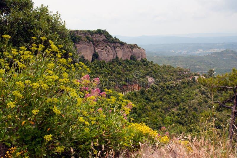 Spring in Montserrat Catalonia Spain stock image