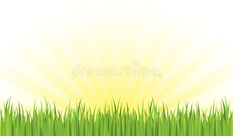 Download Spring morning stock vector. Image of floral, drawing - 7601819