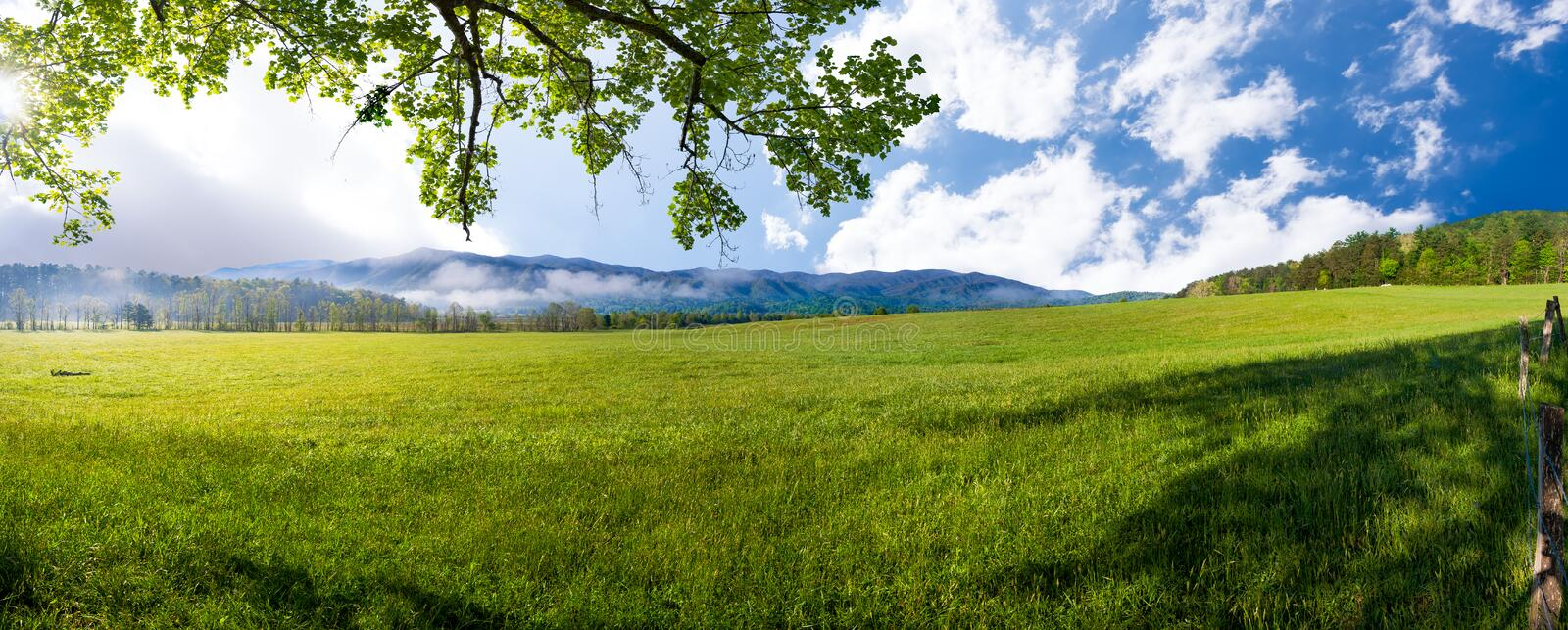Spring Morning in Cade's Cove, TN royalty free stock photography