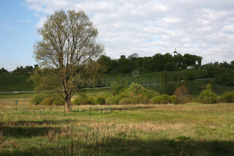 Spring in Moscow suburbs. Spring in Moscow region. High oak behind a fencing stock images