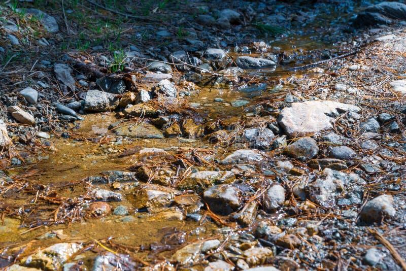 Spring, mountain brook. elting snow flows down a mountain trail stock photos