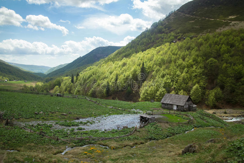 Spring mountain landscape stock photo