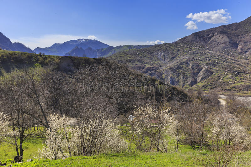 Spring in the mountains near the village of Lahij Azerbaijan stock photography