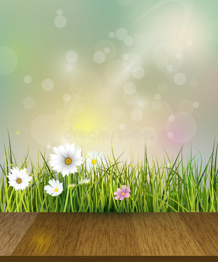 grass field background with flowers. Download Spring Nature Background.Vector Green Grass, Field With White Gerbera, Daisy Flowers Grass Background U
