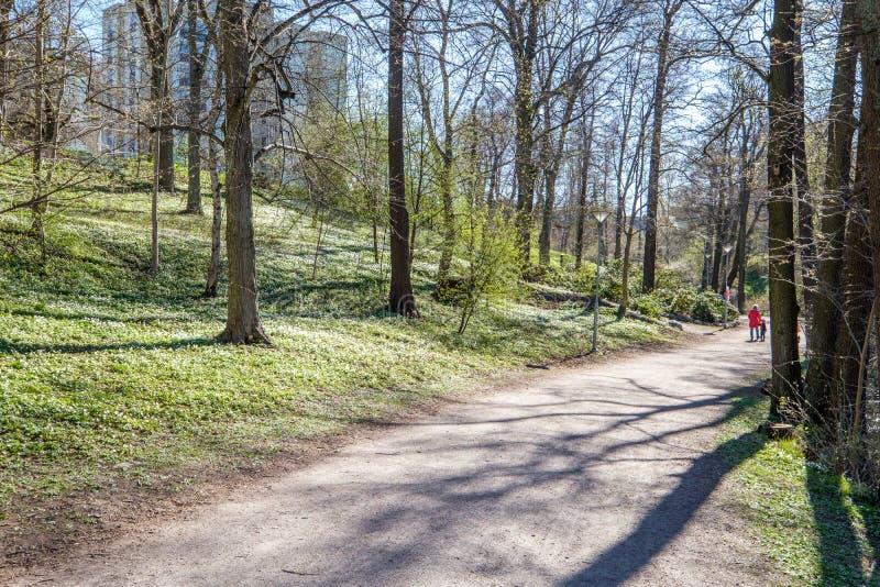 Spring in Norrköping, Sweden stock image
