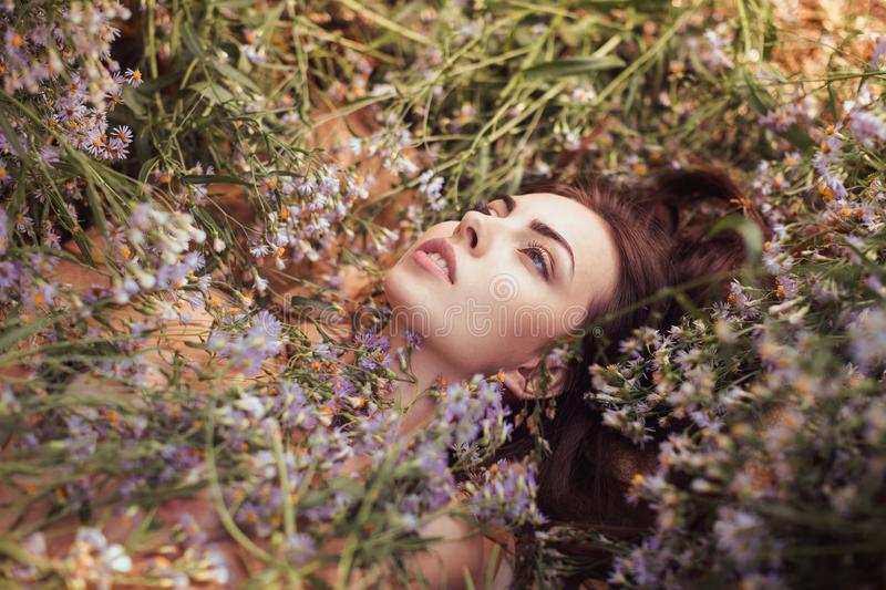 Spring. Nude attractive adult woman outdoors laying on flower field royalty free stock photography