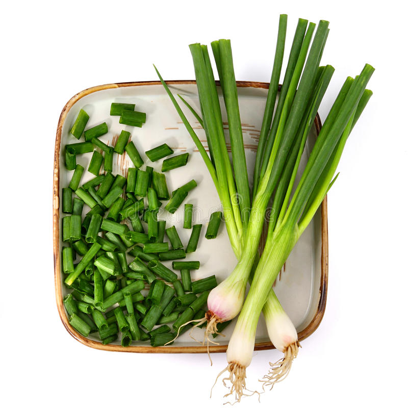 Download Spring onion stock photo. Image of vegetable, onion, health - 16669998