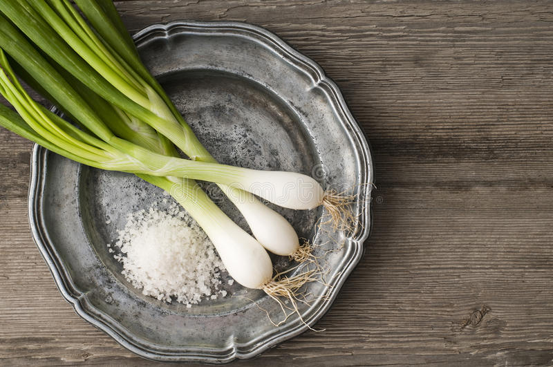 Download Spring onion stock photo. Image of closeup, stem, onion - 20395922