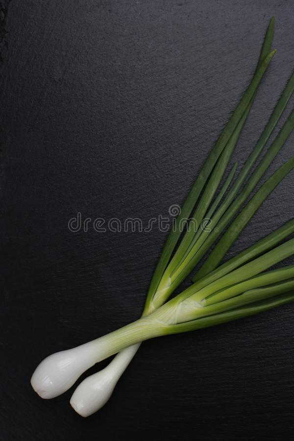 Spring onion on black slate stone royalty free stock photography