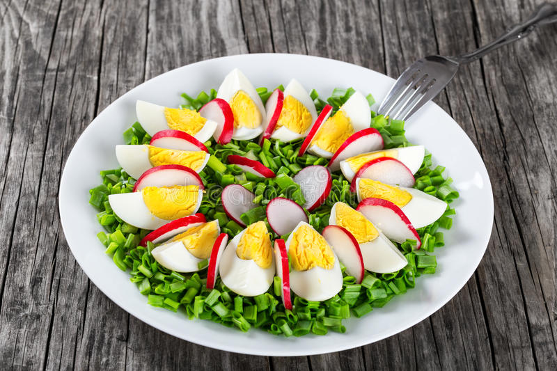 Spring onion, eggs, radish salad, close up royalty free stock images