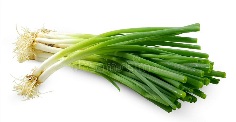 Spring onion isolated on white royalty free stock photo