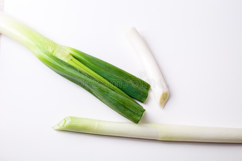 The onion stock image