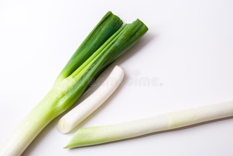The onion stock photos