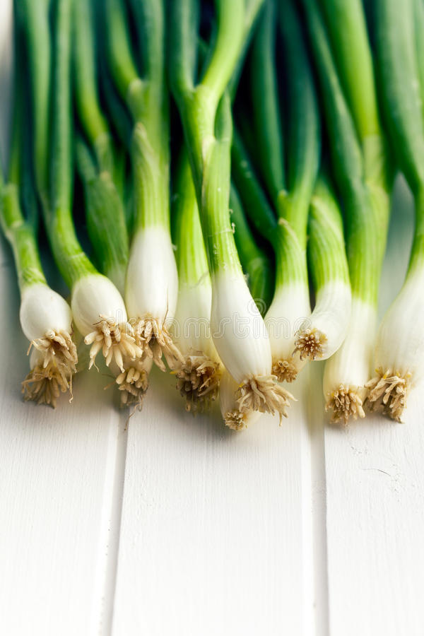 Spring onion on white table stock photos