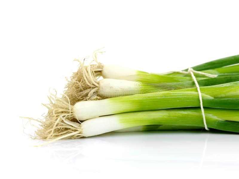 Download Spring Onions stock photo. Image of garden, bunch, string - 12929356