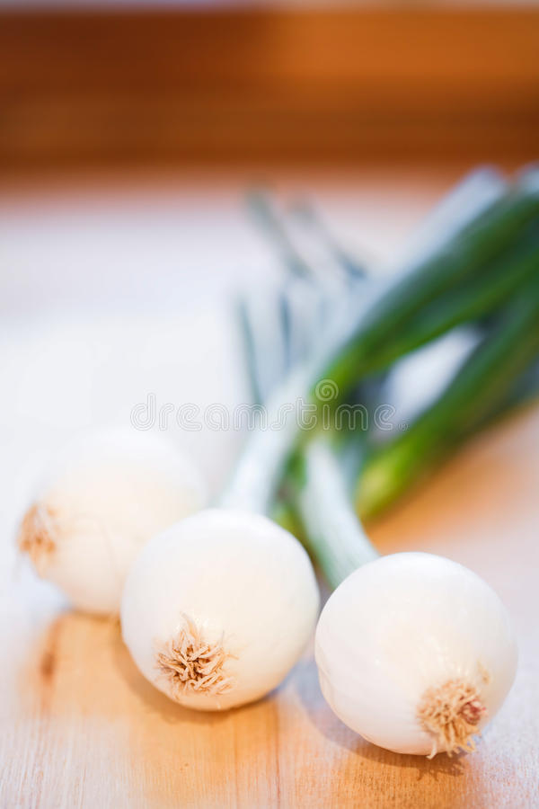 Download Spring onions stock photo. Image of foods, life, cookery - 22616864