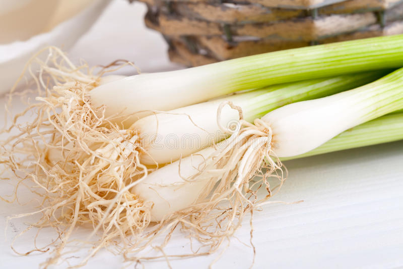 Download Spring onions stock photo. Image of diet, freshness, garnish - 25703524