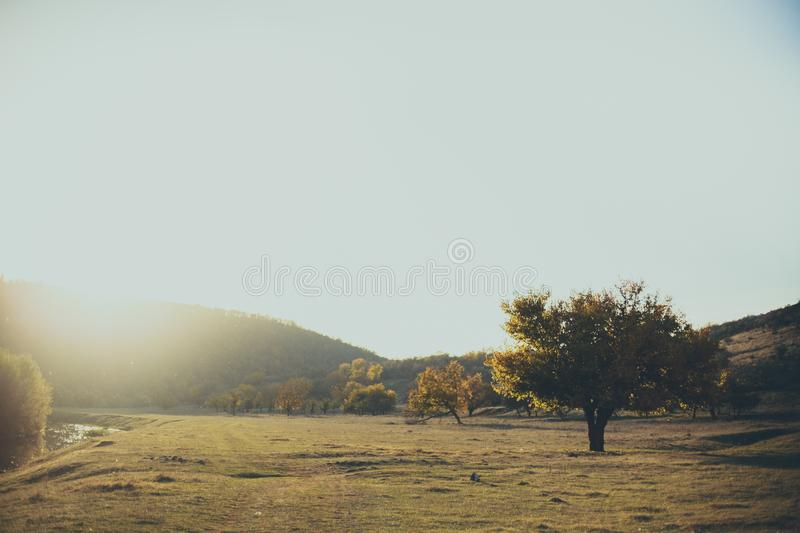 Spring panoramic landscape. Wonderful place royalty free stock photography
