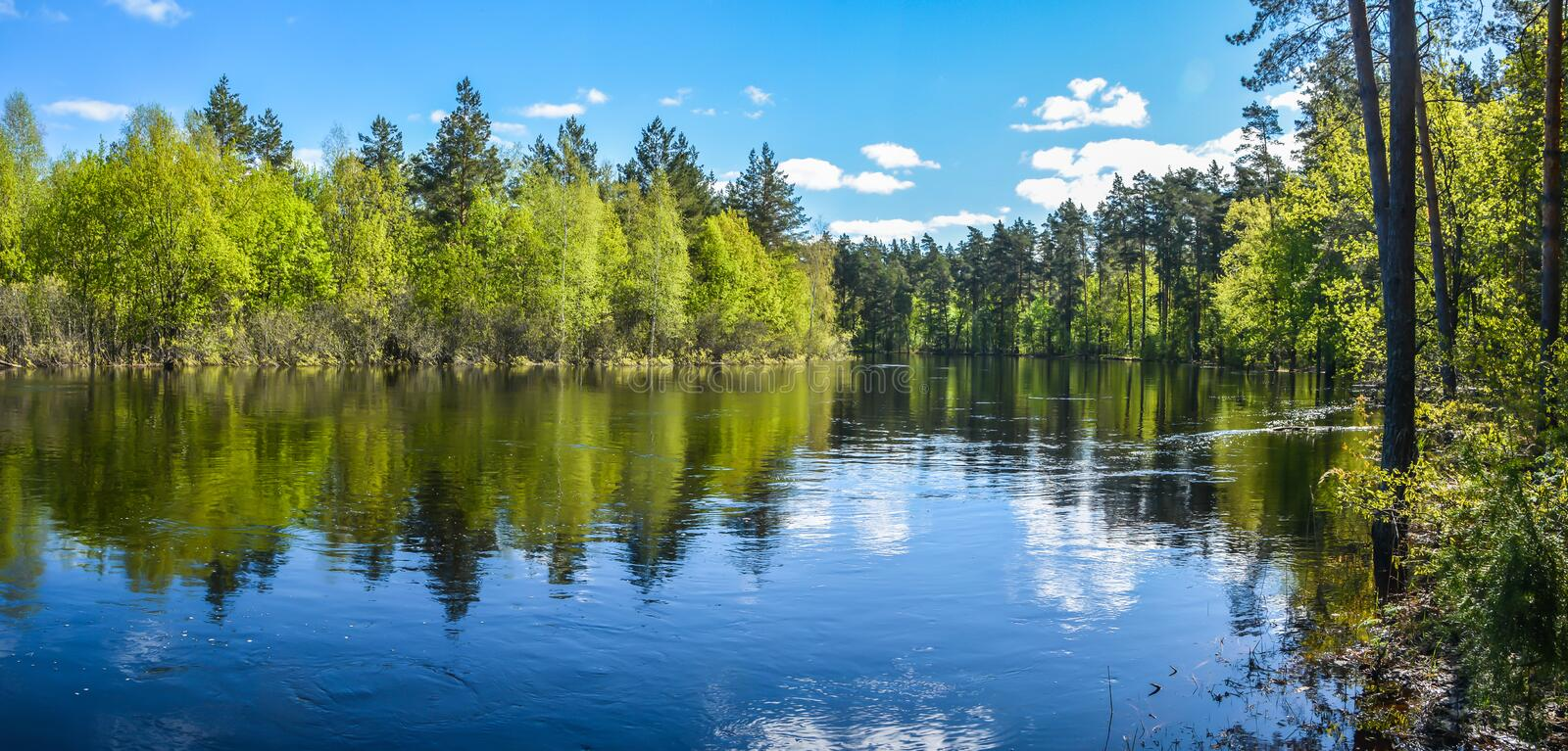 Spring panoramic water landscape of Central Russia. Panorama of the river in may in the national Park `Meshchersky royalty free stock photos