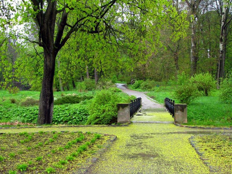 Spring in a park. Spring in aleksandria park in Ukraine stock images