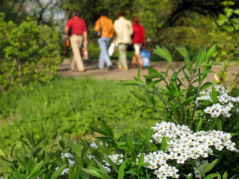 Spring in the park. People going for spring weekend picnic in the park stock image
