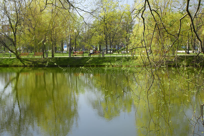 Spring park. Park next to the Novodevichy Convent is a favorite walk Muscovites royalty free stock image
