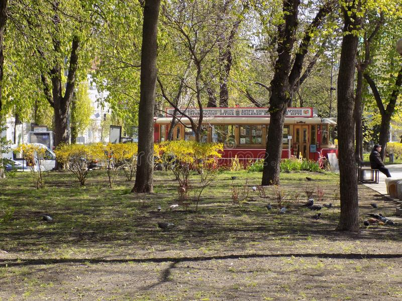 Spring in the park Shevchenko royalty free stock photography