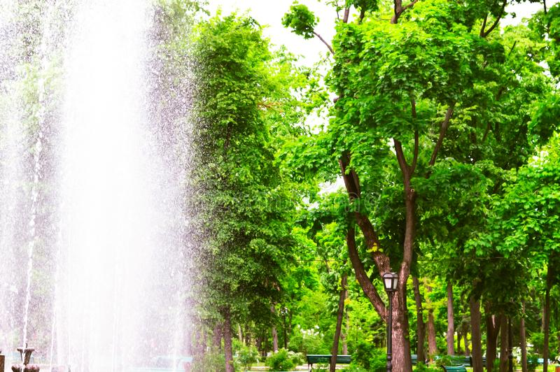 Spring Park and the work. Of the city fountain royalty free stock photos