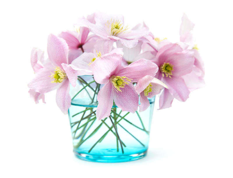 Spring pastel stock photography