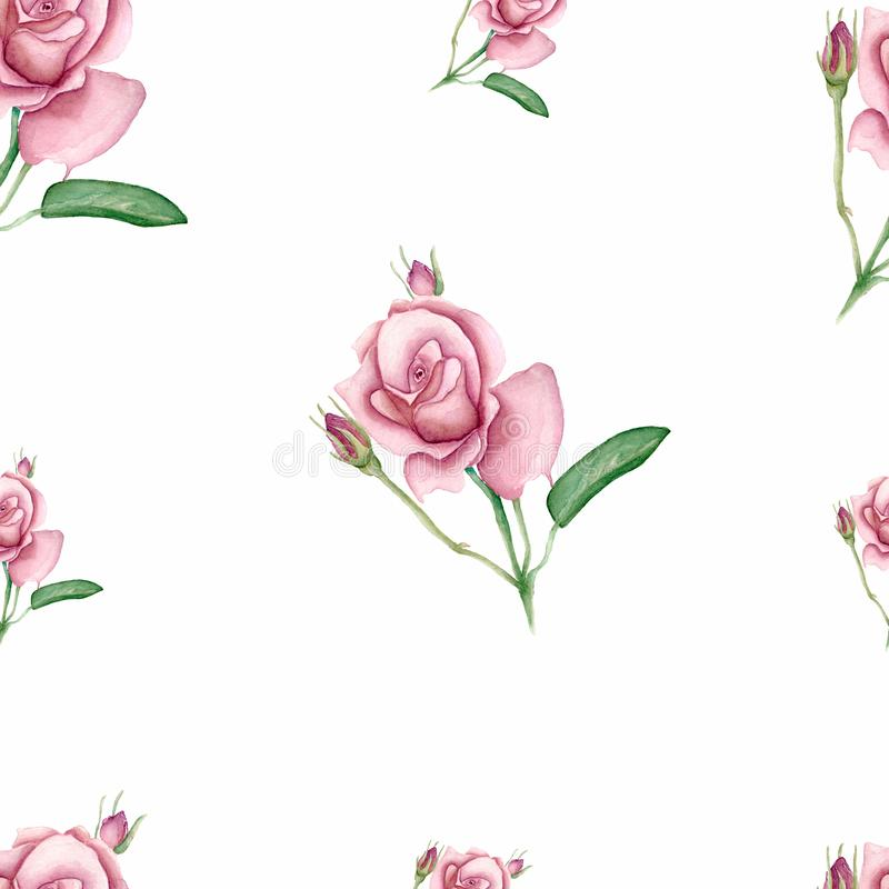 Spring pattern vintage watercolor bouquet of pink roses leaves, blooming branches, flowers, watercolor botanical illustration vector illustration