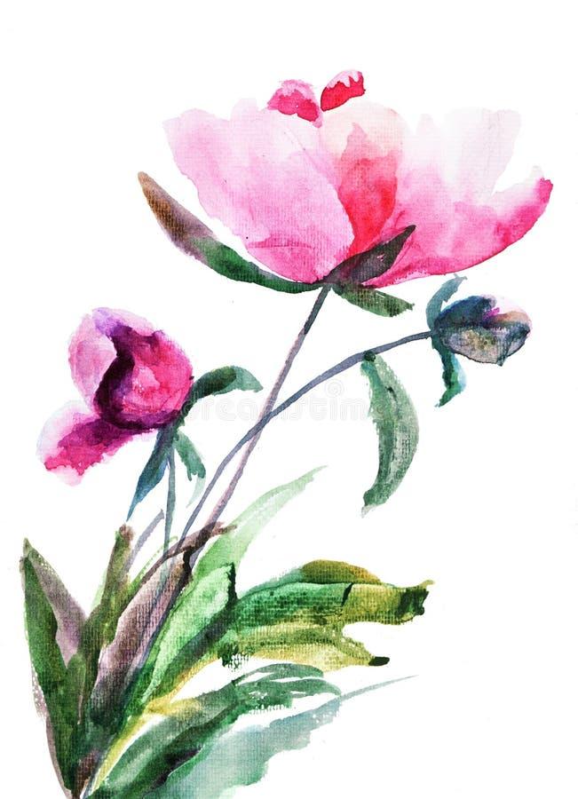 Spring Peony flowers