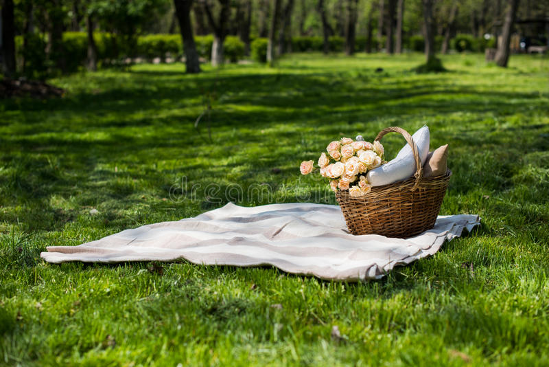 Spring picnic in a park. Wicker basket with flowers and pillows on the fresh green grass, relaxing on vacation stock images