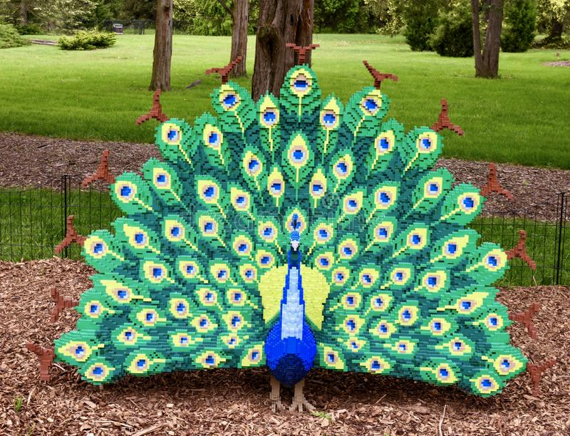 Peacock. This is a Spring picture of a piece of public art titled: Peacock; on exhibit at the Morton Arboretum in Lisle, Illinois in DuPage County.  This piece royalty free stock image