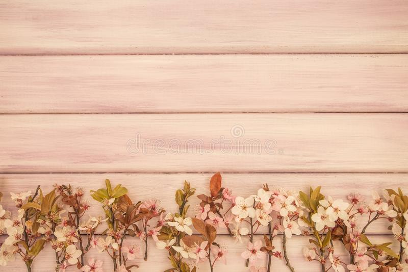 Art Spring wooden background with pink blossom stock images