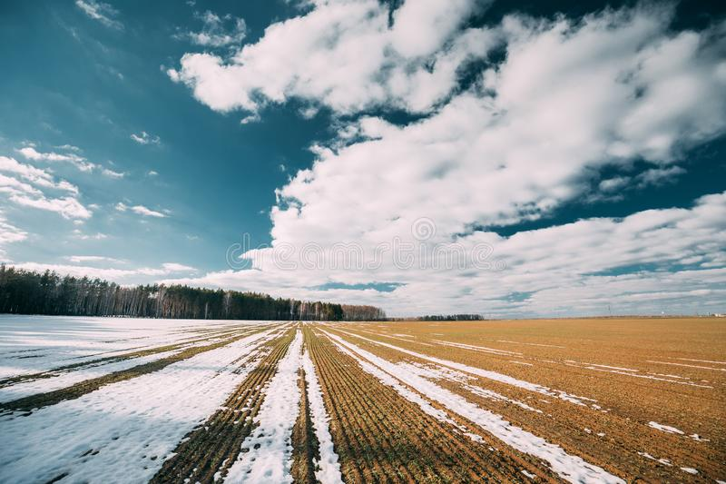 Spring Plowed Field Partly Covered Winter Melting Snow Ready For New Season. Ploughed Field In Early Spring. Farm stock photography