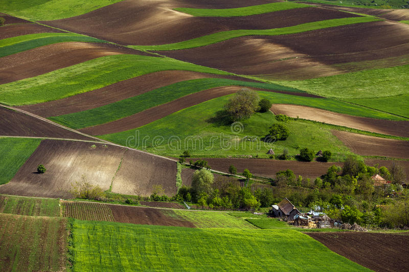 Spring plowing land near a house. stock image