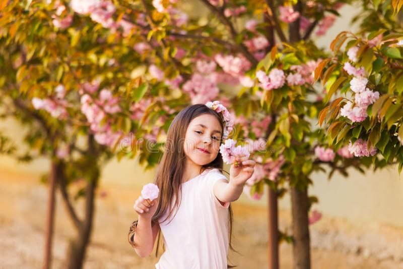 Spring portrait, adorable little girl walk in blossom sakura tree garden stock image