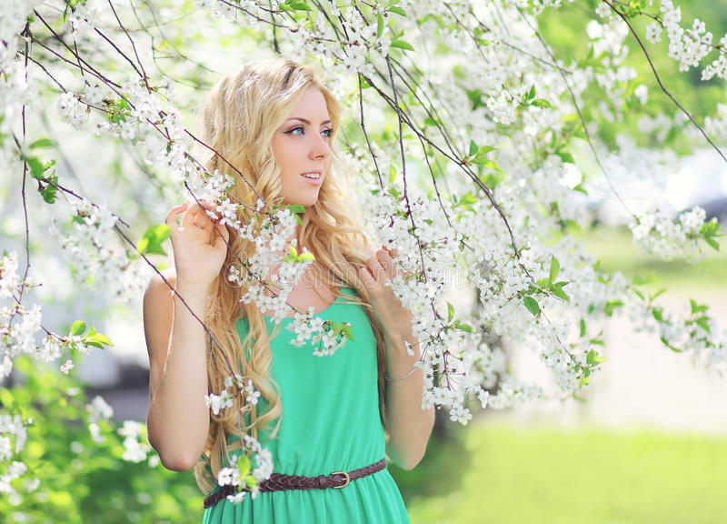 Spring portrait of a beautiful young woman in flowering royalty free stock photo