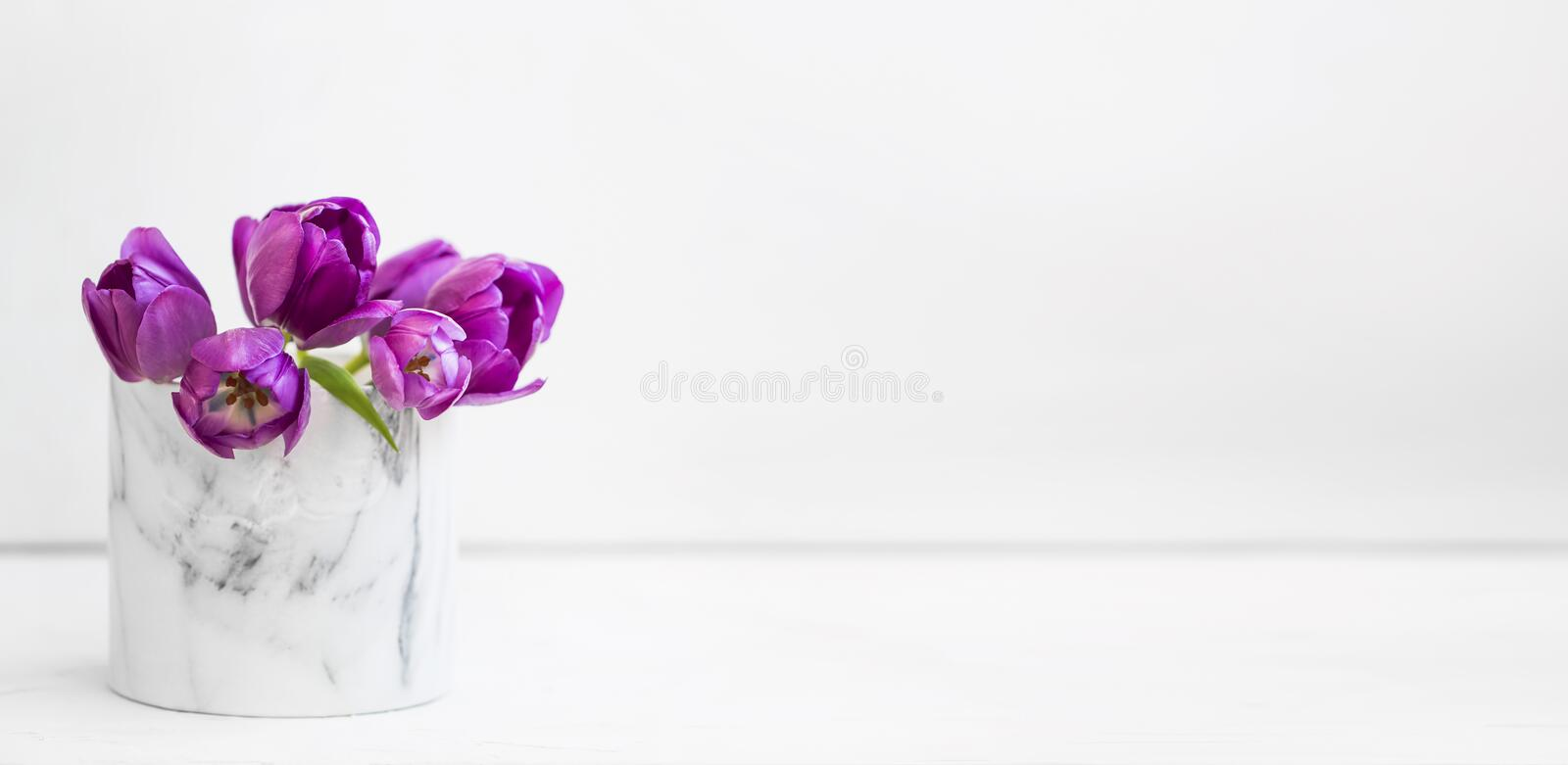 Spring purple tulips bouquet in a vase on white background, spring flowers bouquet royalty free stock images