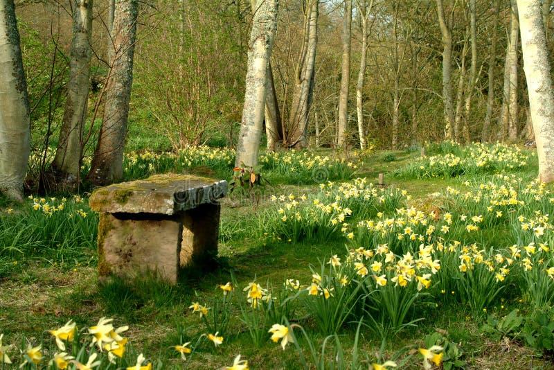 Spring Retreat - Scotland stock images