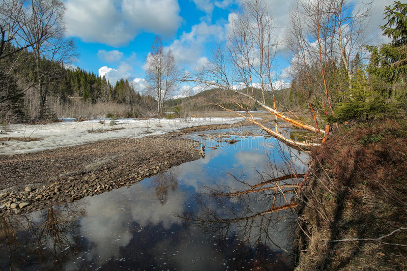 Spring at the river. Spring flood at the river in the mountains in Norway royalty free stock image
